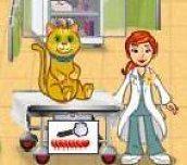 Hra - Dr. Daisy Pet Vet