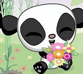 Hra - Zamilovaná panda