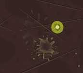 Hra - Fruit Ninja Online