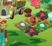 Hra - Farmers market