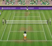 Hra - Tennis Champions