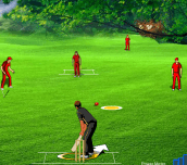 Fantacy Cricket