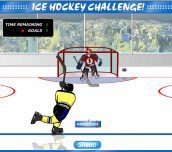 Ice Hockey Challenge!