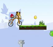 Hra - Angry Birds Bike Revenge