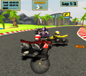 Hra - Go Kart Racing