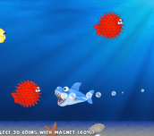 Hra - Fishy Rush