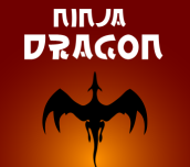 Hra - Ninja Dragon