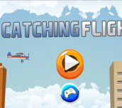 Hra - Catching Flight