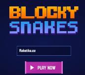 Hra - Blocky Snakes