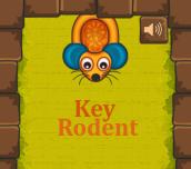 Hra - Key Rodent