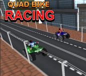 Hra - Quad Bike Racing