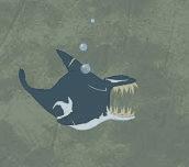 Hra - Killer Whale