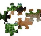 Hra - Puzzle koníček