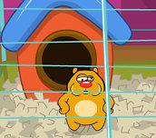 Hra - Chubby Hamster