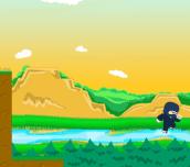 Hra - Ninja Trouble