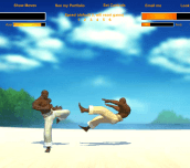 Hra - Capoeira Fighter