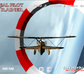 Real Pilot Trainer