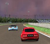 Hra - Speed Rally Pro