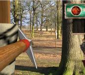 Hra - Robin Hood Adventures