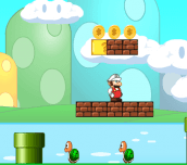 Mario Mushroom Adventure 2