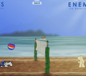James The Beach Zebra