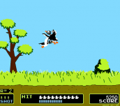 Hra - Duck Hunt
