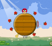 Hra - Rolling Angry Birds