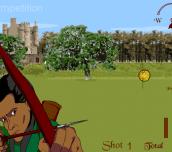 Hra - Archery