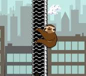 Slippery Sloth