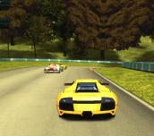 Hra - Speed Rally Pro 2