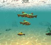 Hra - Fisk