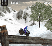 Hra - Atv Winter Challenge