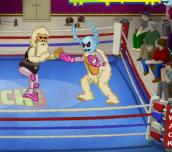 Hra - Wack Wrestling Challenge