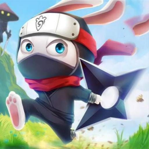 Hra - Ninja Rabbit