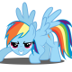rainbow dash cool
